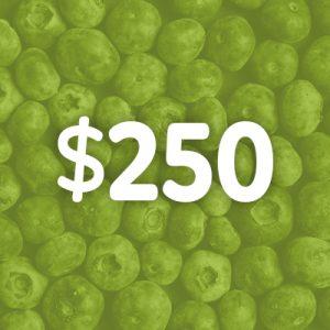 Donate $250